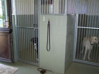 Internal hotel kennels