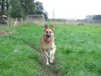 Zoe running!