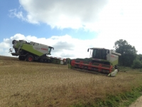The combine in the picture with wheels is a Class Lexion 520, The other one which is on tracks to keep ground pressure low is a Class Lexion 570 terra trac.The 2014 harvest just flew by the two combines made very short work of all our corn fields.Because these two combines are so fast we only combined when the weather was sunny which in turn meant that the grain was about 15% moisture.When we sell any grain it has to be no more than 15% moisture so this saves us having to dry the grain which is very expensive with gas and electric on our drying floor in the grain shed.