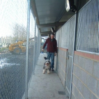 Here is Tim about to take Freddie for a walk. Notice the security of 
